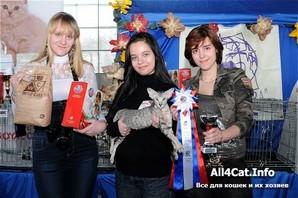 """Выставка """"Рождественское шоу"""" 22-23 декабря"""